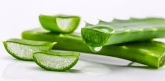 aloe vera gel before or after moisturizer